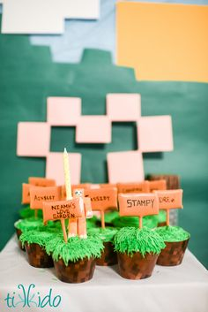 Minecraft Stampy Longnose Birthday Party | Tikkido.com