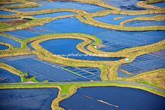 202-photo-aerienne-marais-salants-guerande-le-croisic-batz-sur-mer-oeillet.jpg - photo aérienne des marais salants de Guérande - Loire Atlantique 44