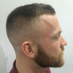 Short Hair with Low Fade