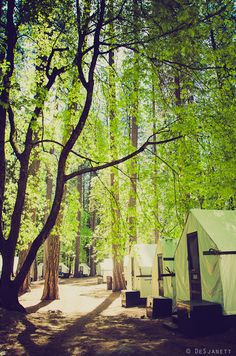 Camp Curry tent cabines in Yosemite - reservations tel:866.875.8456 - http://www.nationalparkreservations.com/yosemite_curry_village.php