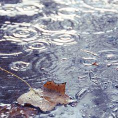 smell of rain on asphalt Walking In The Rain, Singing In The Rain, Rainy Night, Rainy Days, Smell Of Rain, I Love Rain, Rain Go Away, Sound Of Rain, Creature Comforts