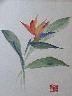 Selección de acuarelas de flores - Flowers - watercolors                                                                                                                                                                                 Más