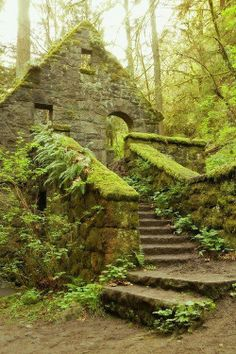 The Witches Castle - Portland, Oregon - We really liked how the moss is grown over the structure, like it has become part of nature.