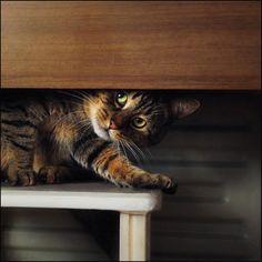 Oh darn, you found me.