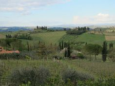 Sovestro in Poggio Winery: Beleza toscana