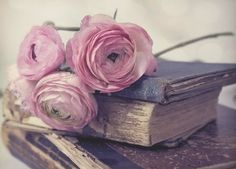 books and flowers