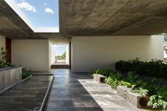 Gallery of Next Hydroponic Plant / CC Arquitectos - 7