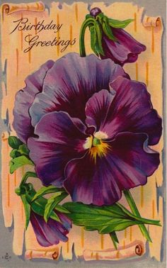Hearty Greetings Vintage Postcard Purple Pansy Flower Green Leaves Series 258 F China Painting, Tole Painting, Vintage Greeting Cards, Vintage Postcards, Vintage Clip, Flower Prints, Flower Art, Pansy Flower, Art Flowers
