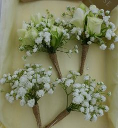 Corsages of freesia, gypsophila and spray rose and simple gypsophila boutonnieres