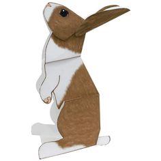 Hase,Tiere,Papiermodelle,Tiere,Einsteiger-Serie,einfach,Hase,Hase