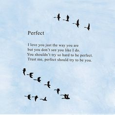 Bo Burnham's Perfect Poem by BoxGhost
