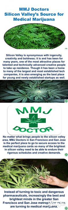 MMJ Doctors- Silicon Valley's Source for Medical Marijuana - Magazine with 9 pages: Silicon Valley is the nickname for the region that is south of the bay area of San Francisco in the state of California. For several decades this has been a center of business and technology innovation as the center and intellectual home of many of the world's leading high tech corporations.