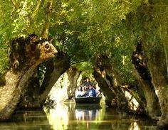 Au fil du marais poitevin - On s'EvadeOn s'Evade #maraispoitevin #destination #nature