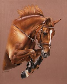 Horse pastels | Pastels animaliers et équins - Photographies - Peintures