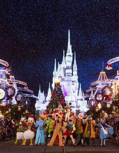 Disney Parks After Dark: Once Upon AChristmastime
