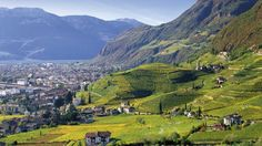 The beautiful scenery of South Tyrol! More about this lovely region on ludwigs.nl