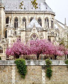 Paris, France, French, Travel, Visit Paris, Paris Photos, City of Lights, Eiffel Tower, Notre Dame, Café, Romance, Montmarte
