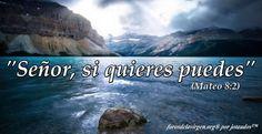 """#BIBLIA """"Señor, si quieres puedes"""" (Mateo 8:2)"""