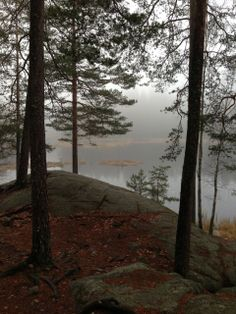 Nuuksio, Espoo, Finland. The Nuuksio National Park is great place for short walks and day trips. If you don't want to take your own picnic stuff, there is a new beautiful Haltia-nature centre, where you can eat and see the exhibitions.