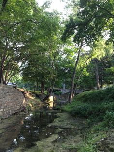 Hackberry Creek, Highland Park--Dallas Many, many hours exploring here as a child.