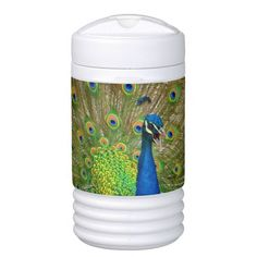 Perfect #Peacock Plumage Igloo Beverage Dispenser
