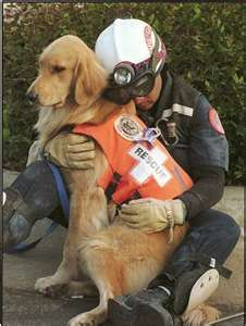 """Partners"".... is a memorable image from the Oklahoma City bombing of Florida firefighter Skip Fernandez and his partner Aspen.  Aspen died in 2005.Those who live in Oklahoma City and the state of Oklahoma will forever be grateful to Skip and Aspen along with all the hundreds of other men, women and canine who worked tirelessly for days in search of survivors."