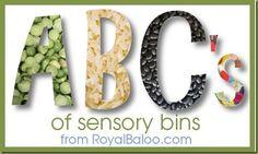 ABCs of Sensory Bins: A-E