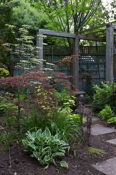 A journalist serendipitously discovers her green thumb and now she's Canada's favorite garden writer. Click through to take a look at her garden.