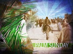 "Happy Palm Sunday! More than 400 years before the birth of Jesus, Zechariah wrote... ""Rejoice greatly, O daughter of Zion! Shout, O daughter of Jerusalem! Behold, your King is coming to you; He is just and having salvation, Lowly and riding on a donkey, A colt, the foal of a donkey."" - Zechariah 9:9"
