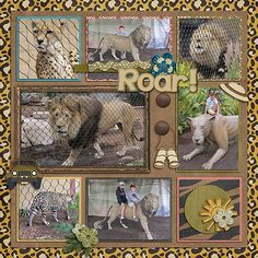 scrapbooking+ideas+on+park+play | Kellybell Designs - Not A Zoo!, Not A Zoo! Cardstocks Connie Prince ...