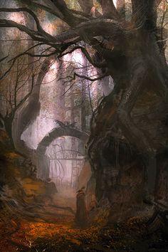 Forest Portal, The Enchanted Wood photo via courtney - fantasy art. Fantasy Places, Fantasy World, Dark Fantasy, Fantasy Forest, Forest Fairy, Mystical Forest, Forest Path, Magic Forest, Enchanted Wood