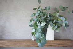Am so in love with silver dollar eucalyptus