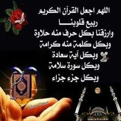 قرآن كريم,  سنة,  فقة,  عقيدة