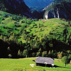 Bucovina - Romania