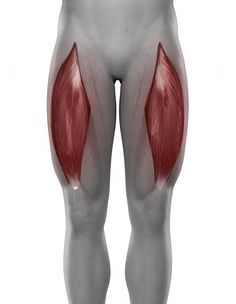 Squats and Hip Dysfuction: 2 Common Problems and How to Fix Them | Breaking Muscle