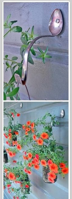 Make your own plant hangers!