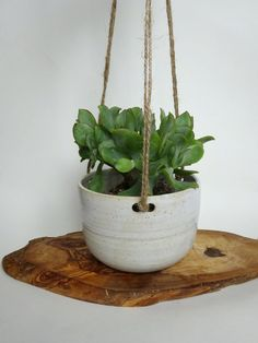 Spotted White Handmade Ceramic Hanging Planter  by viCeramics