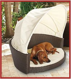 Outdoor Wicker Pet Bed With Canopy - Large - Frontgate Dog Bed Pet Beds, Dog Houses, Dog Accessories, Doge, Pets, Dog Life, Dog Toys, I Love Dogs, Dog Training
