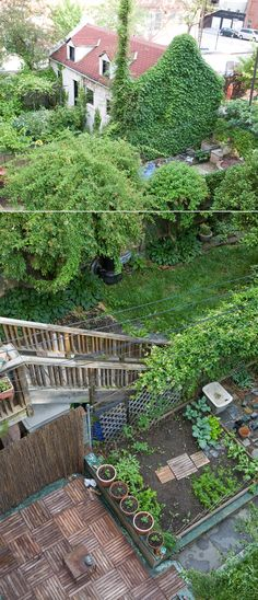 Brooklyn Garden. So lush!