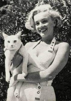 Chats des célébrités - Marilyn Monroe et son chat blanc