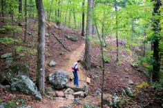Ozark Highlands Trail north of Lake Fort Smith State Park, Arkansas - the state park that moved.