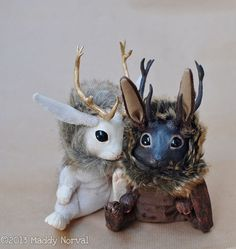 Calla, the White Jackalope with Golden Antlers