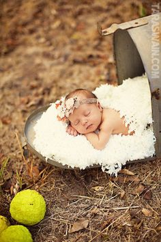 "New Born Baby Photography Picture Description Cute baby announcement idea.""look who arrived!"" this could not be any cuter! Cute Photos, Baby Photos, Cute Pictures, Country Baby Pictures, Kid Photos, Baby Kind, Baby Love, Cute Kids, Cute Babies"