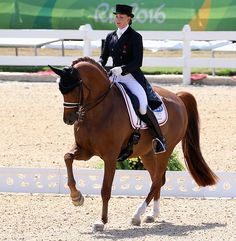 Denmark's Cathrine Dufour & Cassidy Move to Top 10 in World With Minor Changes in Most Rankings – Dressage-News