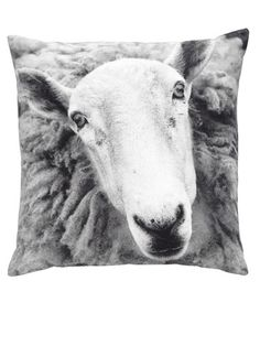 Wouldn't it be fun to cozy up to this face? $135 from Huset. #shopping #pillows