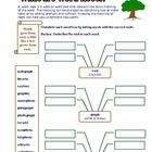 Use these 5 free worksheets for practicing affix use and introducing roots to your students. These worksheets will work fine as stand alone activit...