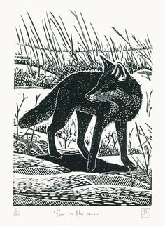 Fox In The Snow ~ Linocut print ~ James Green