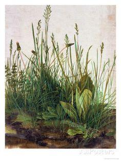 Grote graszode, 1503 Gicléedruk
