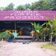 Caitlin heads to Tioman Island for her first experience of volunteer tourism.