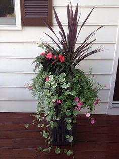 Beautiful pot...